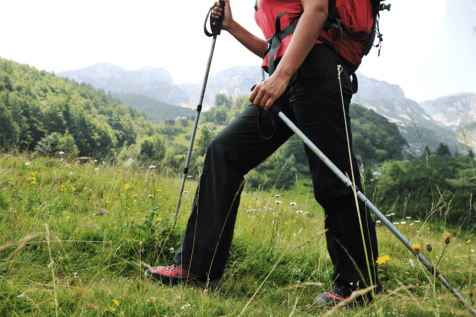 Hiker using trekking poles in a mountain meadow