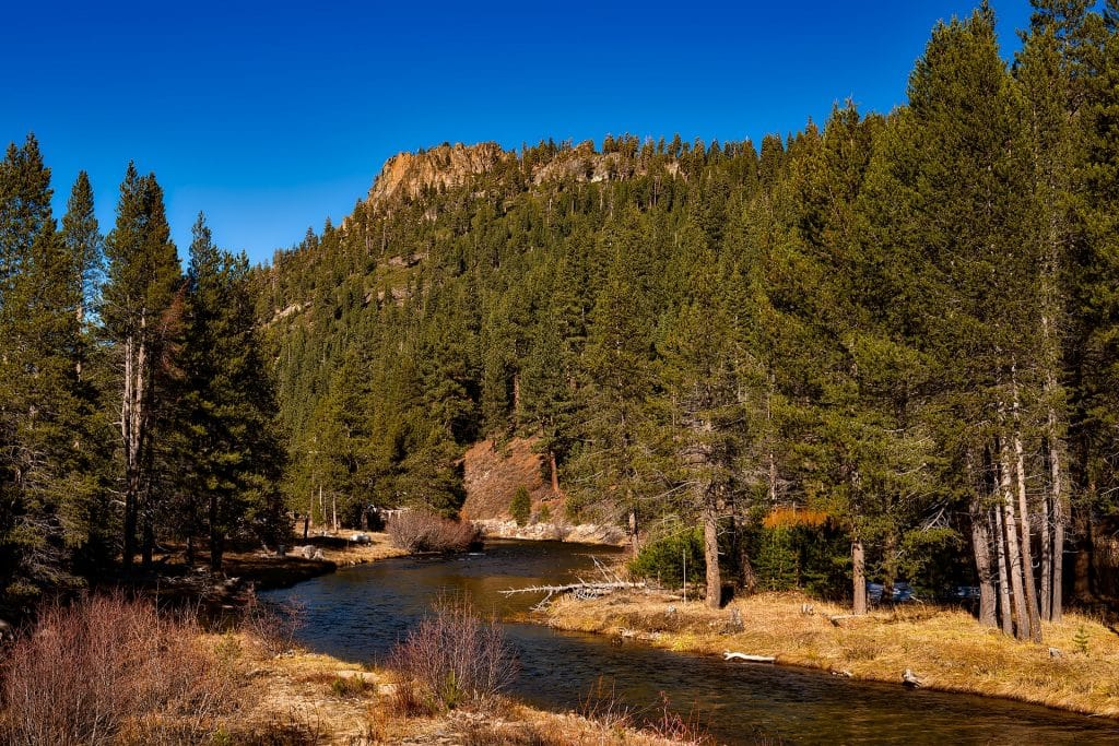 Truckee River From the Trail